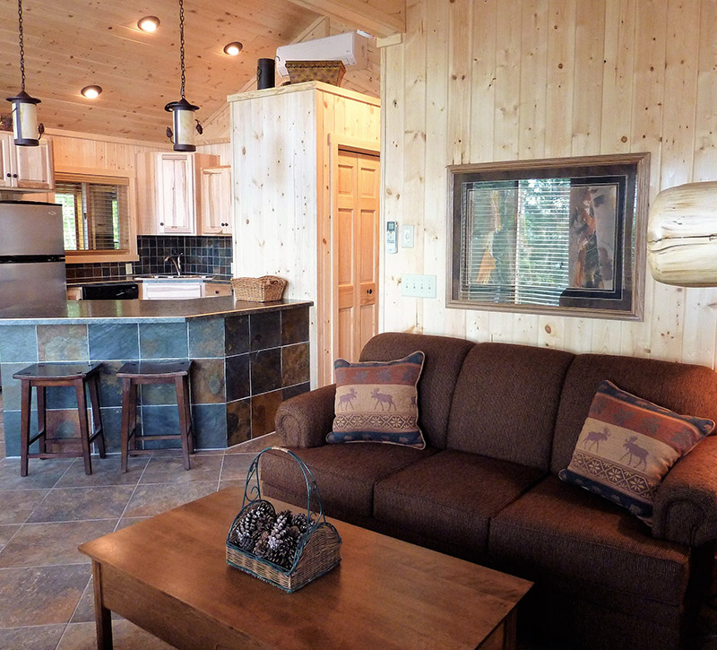 Ely MN Cabin Rentals-The Point Cabin Livingroom-River Point Resort