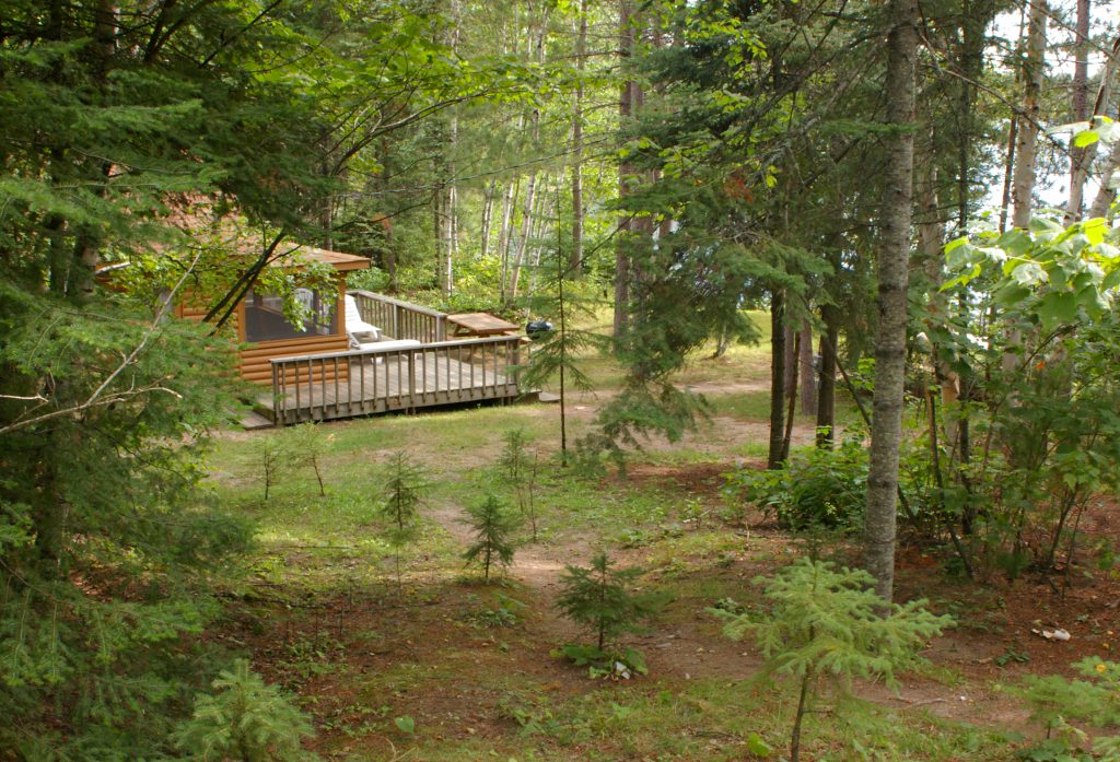 Northern Minnesota Resorts-Romantic Getaway-River Point Resort