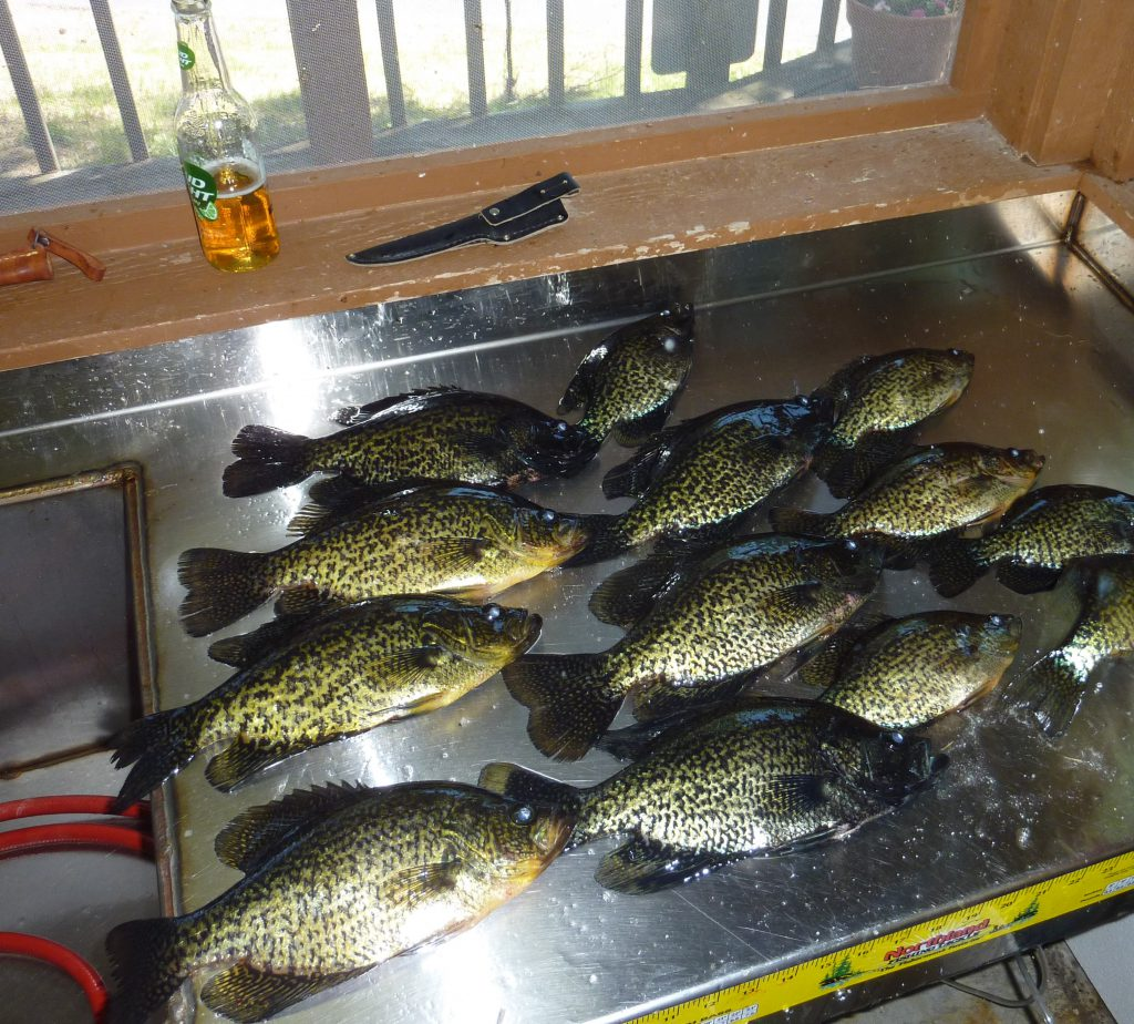 Fishing Resorts Minnesota-River Point Resort-Crappies-Birch Lake-Ely MN