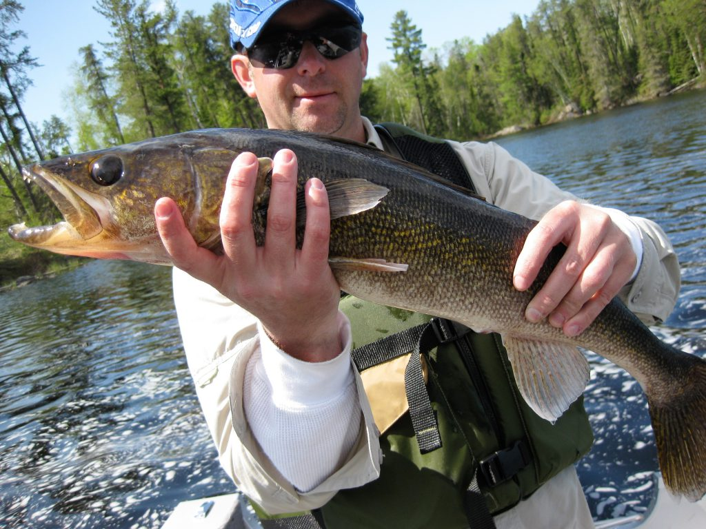 Minnesota Walleye Fishing Resorts-Fishing Packages-River Point Resorts-Birch Lake